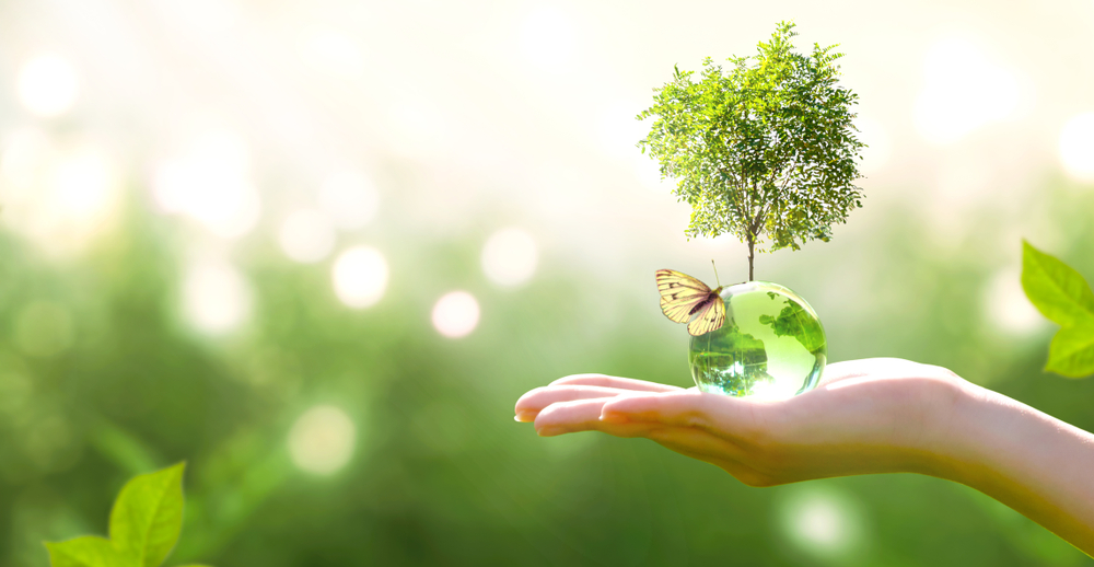 Ecologia al camping baia verde